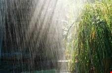 باران به نیمه غربی و شمالی کشور رسید/ افت شدید دما در بیشتر مناطق
