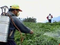 سالانه 2 میلیون تن کود شیمیایی به کشاورزی ایران تزریق می شود!
