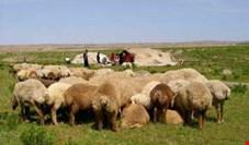 ۱۸ میلیون یورو برای آبرسانی به عشایر اختصاص یافت