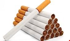 مافیای سیگار مانع افزایش مالیات دخانیات شد؟