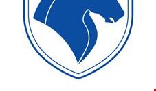 ایرانخودرو ۱۱۵ شرکت دارد