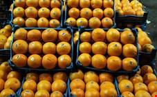 برای تأمین بازار شب عید 40 هزار تن پرتقال خریداری می شود