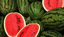 هندوانه در لیست اقلام عمده صادراتی ایران قرار گرفت/ صادرات ۲۳/۷ هزار تن هندوانه در سه روز