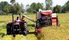 نسبت کفایت سرمایه کشاورزی به 10.77 درصد افزایش می یابد