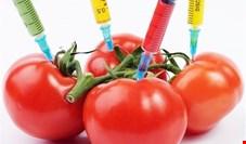 هیچ بودجهای به تولید محصولات ارگانیک اختصاص نمیدهند و از کشاورزان ارگانیک هم حمایت نمیکنند!
