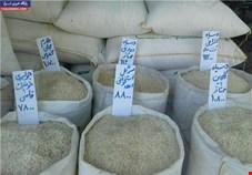 خرید توافقی برنج داخلی تا 15 بهمن ماه ادامه دارد