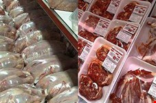 دلیل گرانی گوشت عدم حمایت دولت از تولید کنندگان دام است/ اگر از تولید کننده حمایت شود، از واردات گوشت بینیاز می شویم