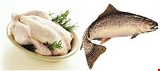 آخرین تحولات بازار مرغ و ماهی/ قیمت مرغ به ثبات رسید