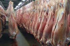 قیمت گوشت گوسفندی در آستانه ٧٠هزار تومان/کمبود دام در آستانه یلدا