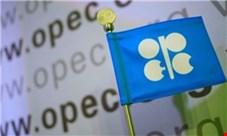 سه عضو اوپک با افزایش تولید مخالفت می کنند/ تلاش آژانس بین المللی انرژی برای القای نادرست از بازار نفت