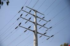 مقدمات رایگان شدن برق مدارس فراهم شده است