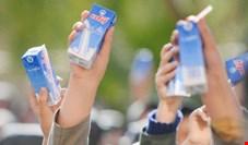 پرداخت ۱۰۰ میلیارد تومان برای توزیع رایگان شیر مدارس
