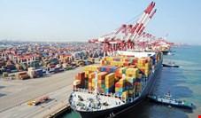گلایه وارد کنندگان از خلف وعده بانک مرکزی در خصوص واردات کالاهای اساسی