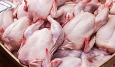 قیمت روز مرغ در میادین میوه و تره بار (۹۹/۱۱/۰۴) + جدول