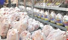 خرید مرغ دولتی به قیمت جان مردم!