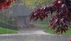 سامانه جدید بارشی در راه است/ وزش باد شدید موقت