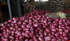گندیده شدن دهها تن پیاز زیر آفتاب 55 درجه خوزستان!/ پیاز ۵ هزار تومانی را ۴۰۰ تومان هم از کشاورز نمیخریدند
